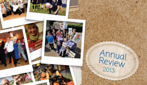 Cover for 2013 Annual Review