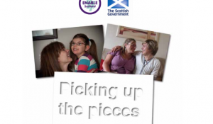 Cover for Picking up the Pieces report